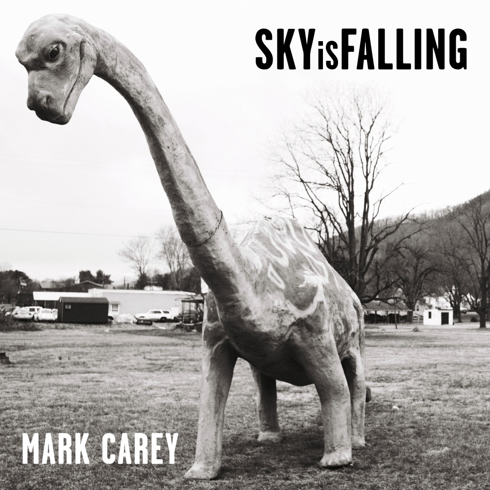 Sky Is Falling Single Art